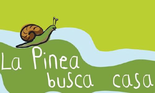 pinea-01